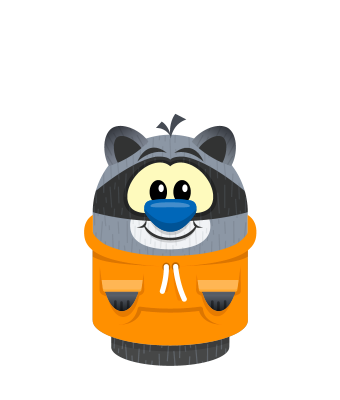 Sprite hoodie orange raccoon.png