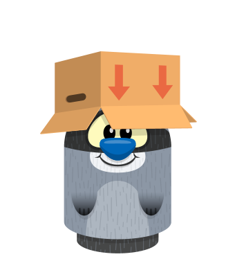 Sprite box hat brown raccoon.png